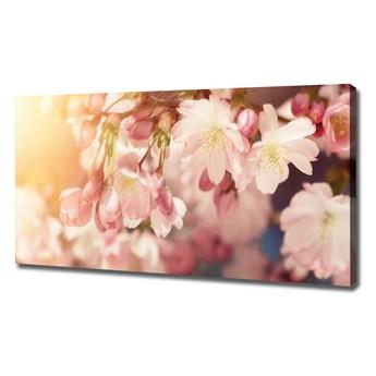 Duży Foto obraz na płótnie Kwiaty wiśni