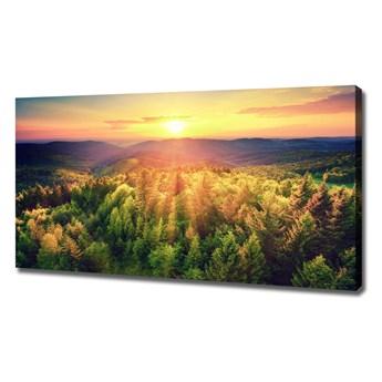 Foto obraz na płótnie Las zachód słońca