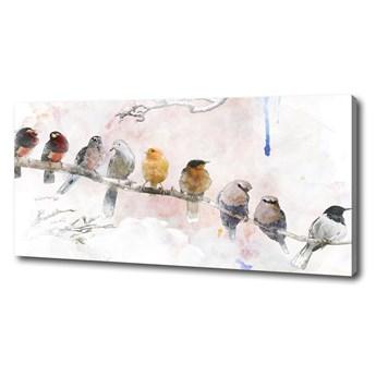 Foto obraz na płótnie Ptaki na gałęzi