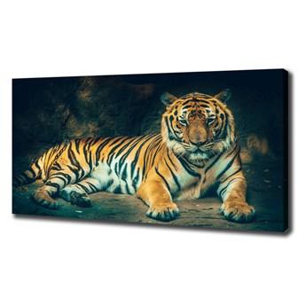 Foto obraz na płótnie Tygrys w jaskini