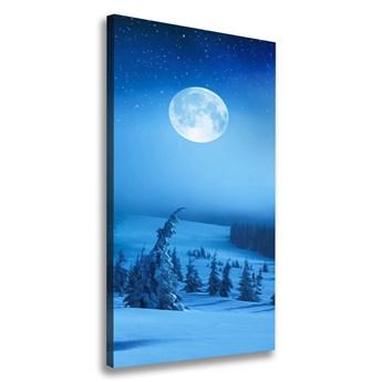 Foto obraz na płótnie Pełnia księżyca
