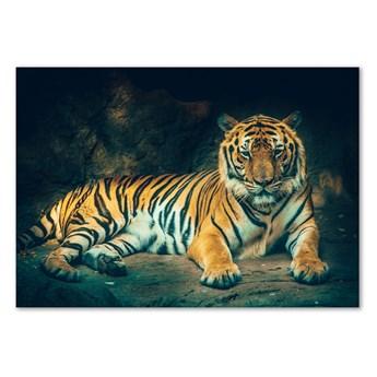 Foto-obraz szklany Tygrys w jaskini