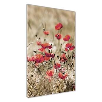 Foto obraz szkło hartowane Polne kwiaty