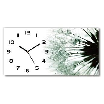 Zegar ścienny szklany Nasiona dmuchawca
