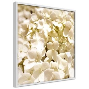 Plakat - Kojące kwiaty