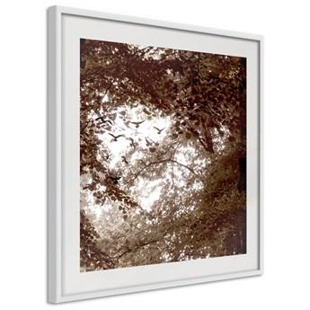 Plakat - W cieniu drzew