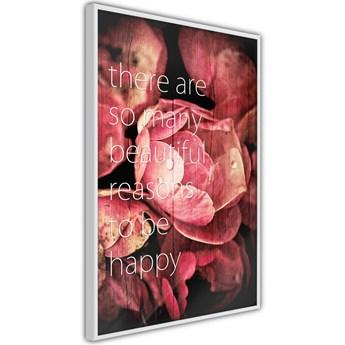 Plakat - Wiele powodów do szczęścia