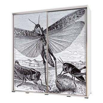 SELSEY Szafa Wenecja 205 cm Rycina z owadami