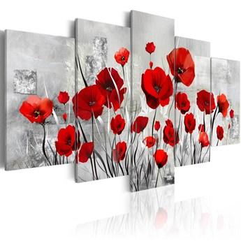 SELSEY Obraz - Szkarłatny obłok 200x100 cm