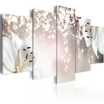 SELSEY Obraz - Magiczna biel 100x50 cm