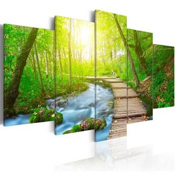 SELSEY Obraz - W słonecznym lesie 100x50 cm