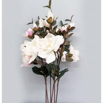 Magnolia duża gałązka w odcieniach bieli z listkiem