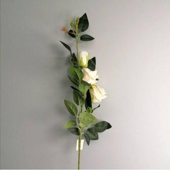 Róża bogata gałązka, kolor kremowy 95 cm
