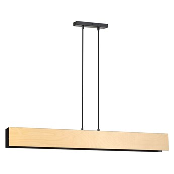 Czarna loftowa lampa wisząca - D005-Nomad