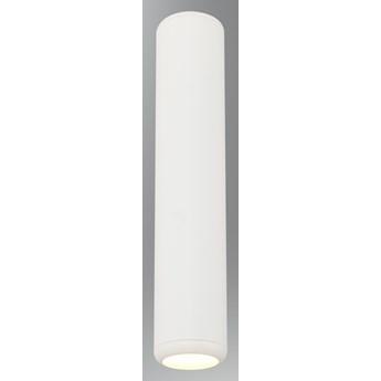 NATYNKOWY SPOT SUFITOWY LED OKRĄGŁY BIAŁY 1201-3,01