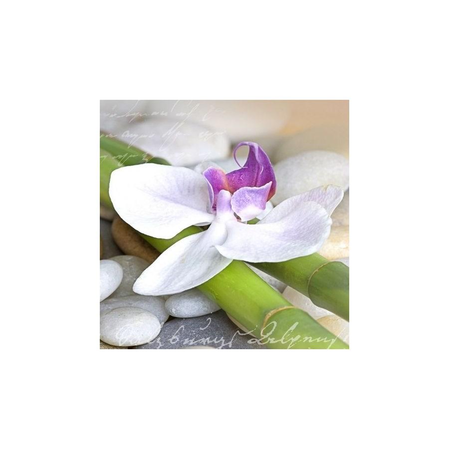dekoria fotografia na szkle bia a orchidea 30x30cm. Black Bedroom Furniture Sets. Home Design Ideas