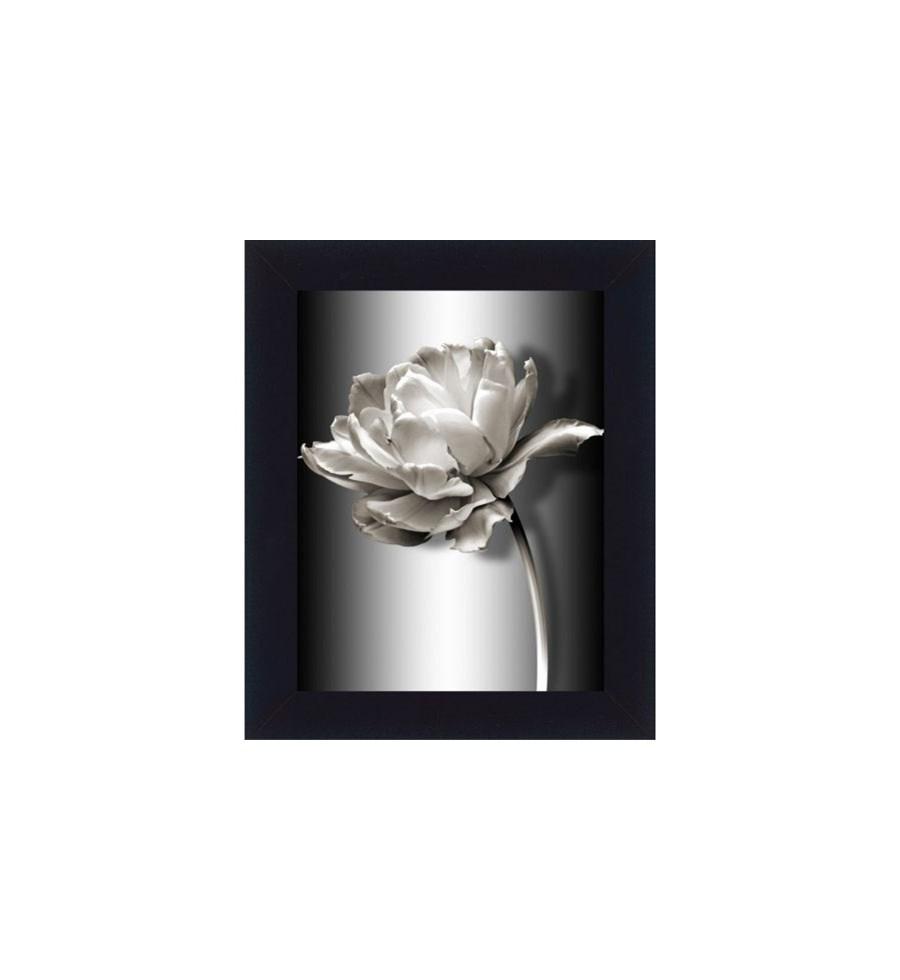 Dekoria Obraz W Ramie Biały Kwiat Ii 31x37cm Obrazy Zdjęcia