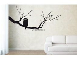 Naklejka na ścianę NSDR011 - Gałąź z sową