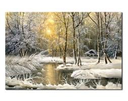 Obraz na płótnie OML078_11 - Krajobraz zimą