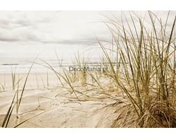 Fototapeta F1566 - Pusta plaża