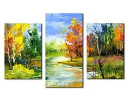 Obraz na płótnie OML076_33 - Krajobraz z kolorowymi drzewami