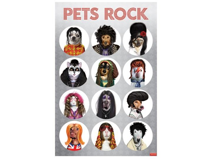 Psy I Koty Jako Gwiazdy Muzyki Plakat