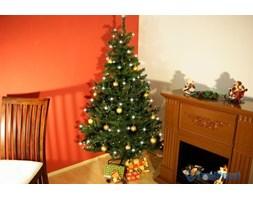 Choinka świąteczna ze stojakiem i oświetleniem 200 szt. - 180 cm