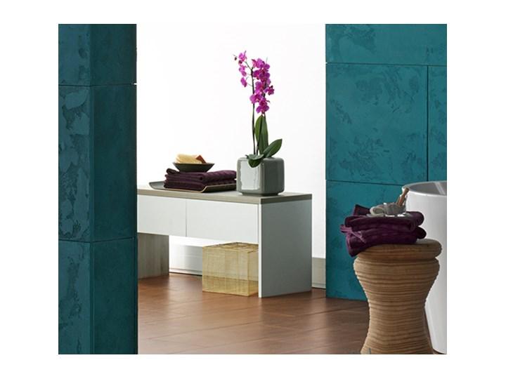 ławka Meble łazienkowe Zdjęcia Pomysły Inspiracje