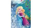 Fototapeta dla dzieci Consalnet 837 Disney - Anna i Elsa