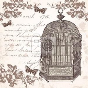 naklejka la cage aux oiseaux naklejki zdj cia pomys y. Black Bedroom Furniture Sets. Home Design Ideas