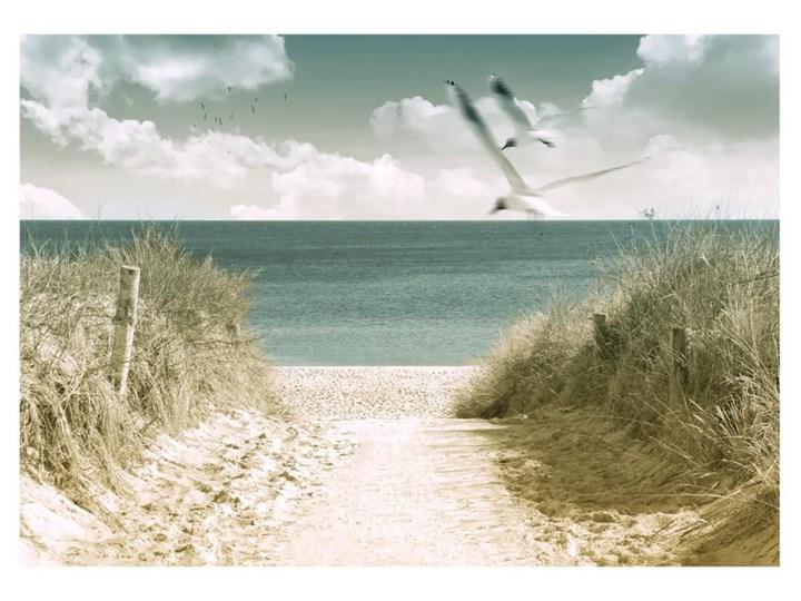 Obraz Glasspik Dunes Obrazy Zdjęcia Pomysły Inspiracje Homebook