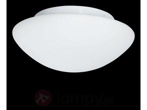 Szklana lampa sufitowa zewnętrzna Wayne 28 cm IP44