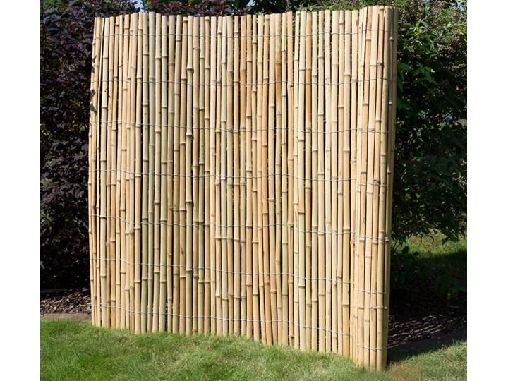 Ogrodzenie Bambusowe Parawan Ogrodowy Mata Bambusowa 200 Cm X 200 Cm Jasna