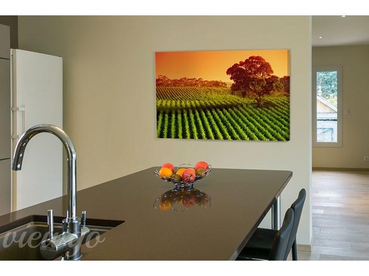 Obraz Do Kuchni Barwna Kuchnia Obrazy Zdjęcia Pomysły