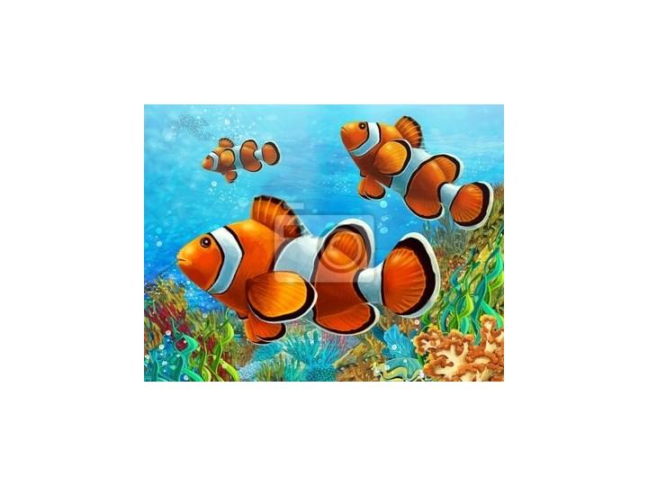 Plakat Rafa Koralowa Ilustracja Dla Dzieci