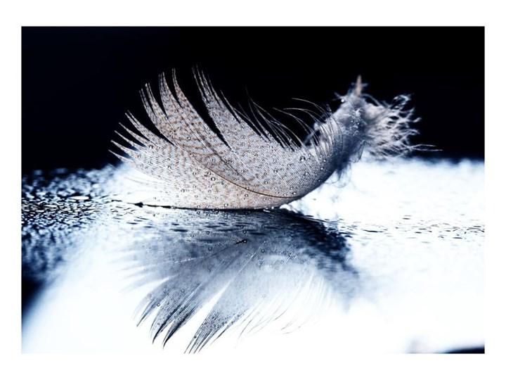Obraz Glasspik Wing 70 Cm X 100 Cm Obrazy Zdjęcia Pomysły