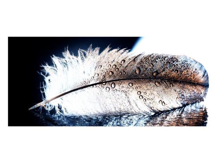 Obraz Glasspik Wing 50 Cm X 125 Cm Obrazy Zdjęcia Pomysły