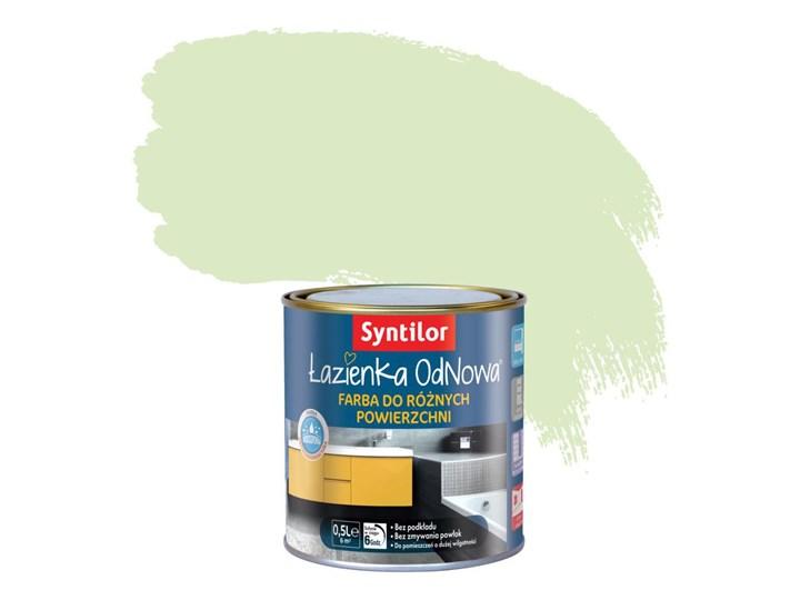 Farba Dekoracyjna łazienka Odnowa 05 L Syntilor