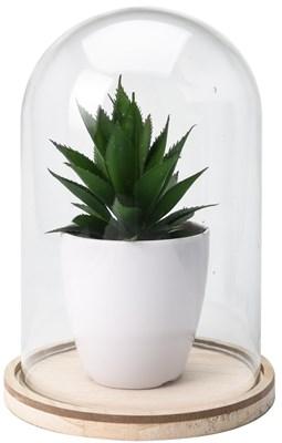 Sztuczna roślina pod szklaną kopułą wzór 4