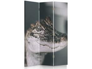 Mały aligator, Parawan pokojowy dwustronny obrotowy 360° na płótnie - Canvas