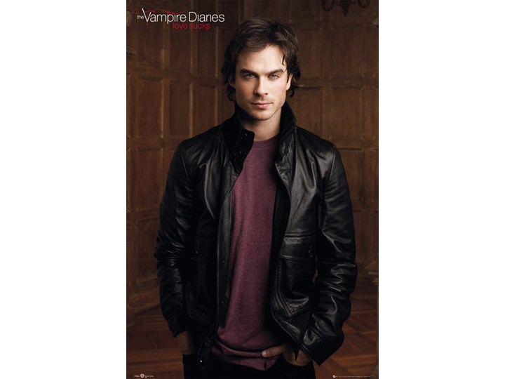 Plakat Obraz The Vampire Diaries Damon 61 X 915 Cm
