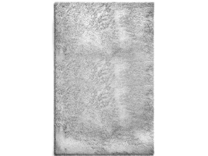 Dywan Siena Silver Dywany Prostokątne Poliester Rozmiar 4 120x170 cm