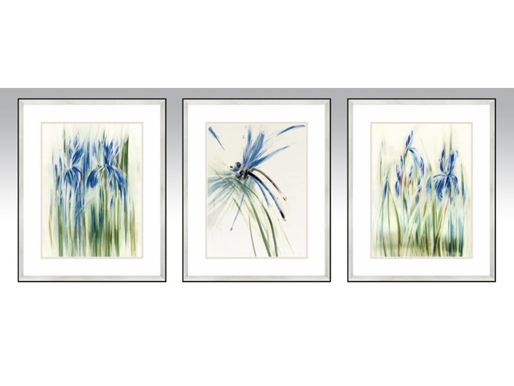 SERIA WODNA 2 - Obrazy natury, kolor niebieski, irysy oraz ważka. Dekoracja sypialni i salonu. Wymiary 43x53 cm Wzór Kwiaty
