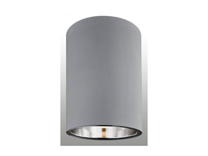 Lampa oprawa sufitowa Argon Tyber 1 1x60W E27 szara 3108 Metal Ilość źródeł światła 1 źródło