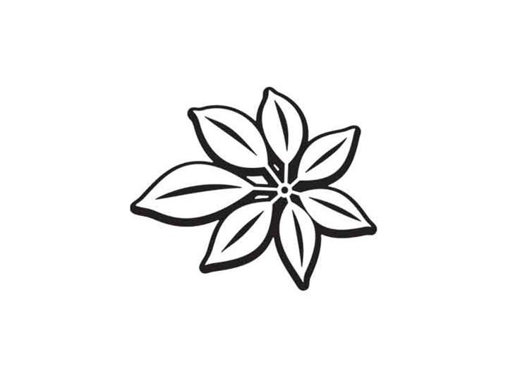 Szablon Malarski 61x80 Cbw568 Kwiat