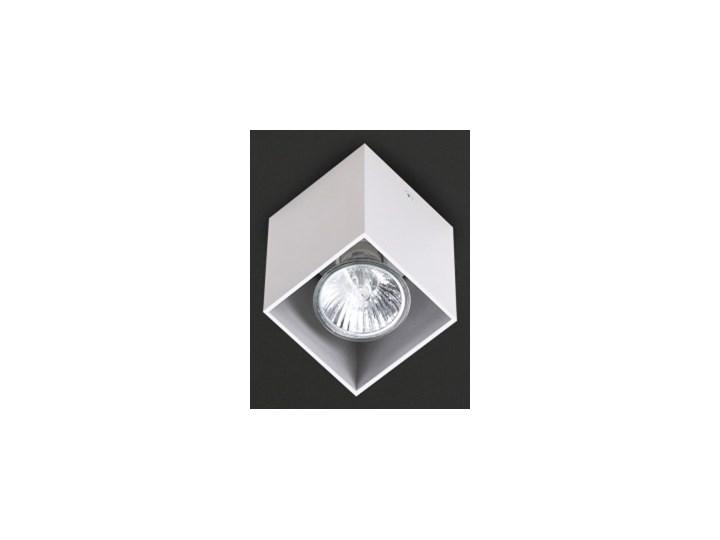 Pet Square C0082 plafon biały Oprawa stropowa Kwadratowe Kategoria Oprawy oświetleniowe