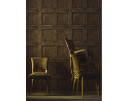 Andrew Martin - Tapeta na ścianę - Regent