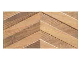 Płytki Elewacyjne Imitujące Drewno Pomysły Inspiracje Z Homebook