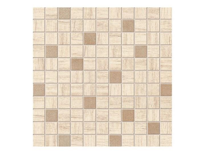 Mozaika Arte 30 x 30 cm Rozmiar2 30x30 cm Kwadrat Przeznaczenie v2 Płytki ścienne
