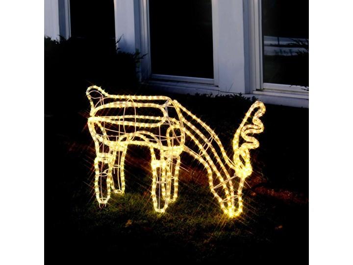 Reindeer Head Down Renifer świecący Zewnętrzny Led Wys59cm